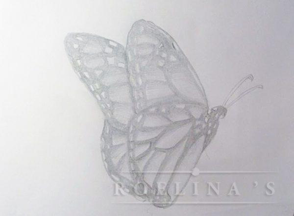 vlinder-tek