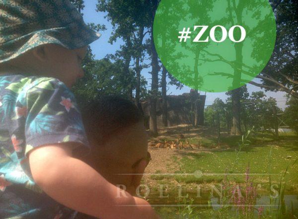 burgers-zoo1