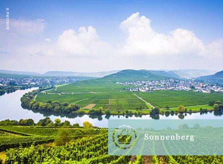 sonnenberg1