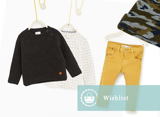 zara-wishlist3